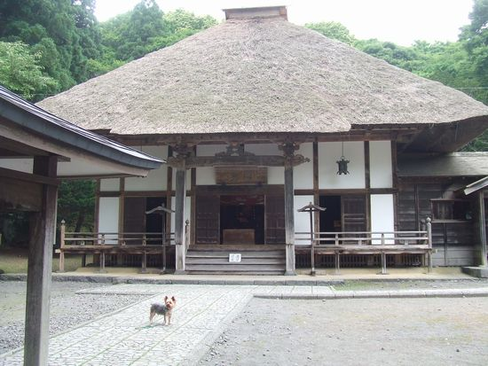 100804-zenkouji3.jpg