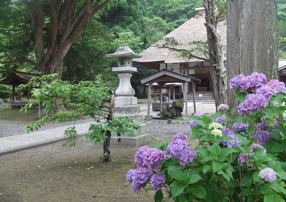 100804-zenkouji7.jpg