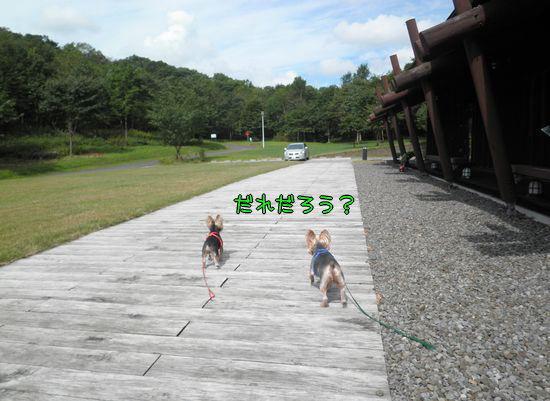 100912-sanpo5.jpg