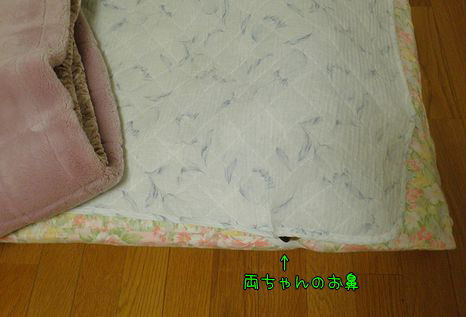 110125-2.jpg