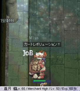 2010_10_25_5.jpg