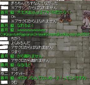 2010_10_31_2.jpg