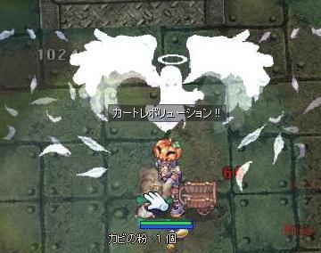 2010_11_1_1.jpg