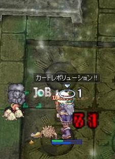 2010_11_3_1.jpg