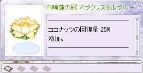 2010_2_27_7.jpg