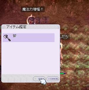 2010_3_4_2.jpg