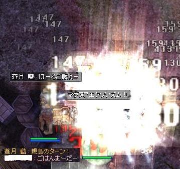 2010_8_17_3.jpg