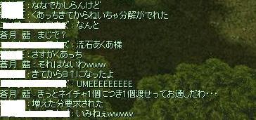 2010_8_9_1.jpg