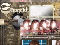 デリヘル 「衝撃東京」 11/23 オープン