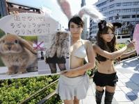 ウサギの毛皮に対する抗議