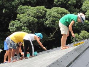 屋根塗り従業員