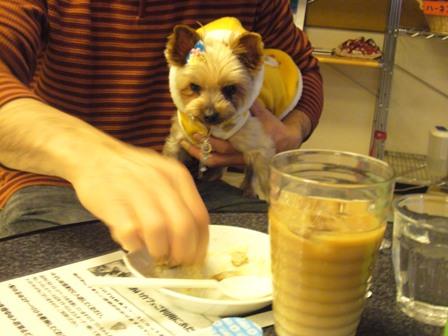 ふれあいカフェのシャロン1