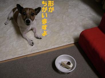 2009_0913_214828-CIMG2818.jpg