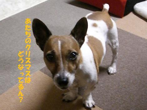 2009_1001_202835-CIMG2922.jpg