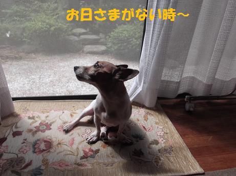2011_0906_102224-DSCF1150.jpg