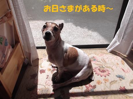 2011_0906_113233-DSCF1152.jpg
