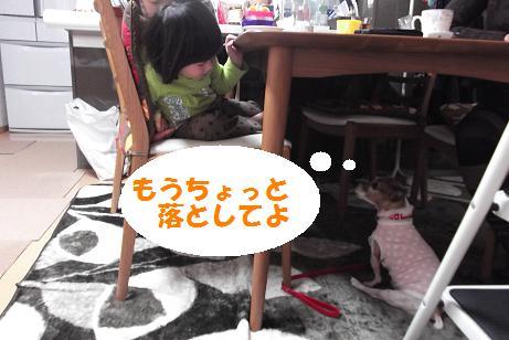 2011_1216_115133-DSCF1637.jpg