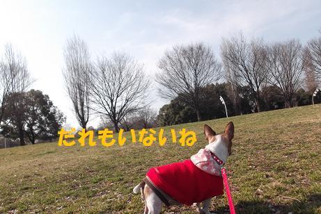 2012_0224_143604-DSCF1834.jpg