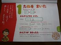 P1170001.jpg