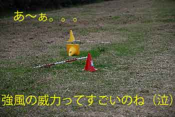 DSC_0053_20081121111754.jpg