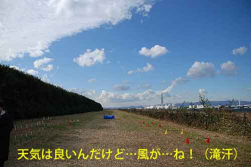 DSC_0055_20081121111759.jpg