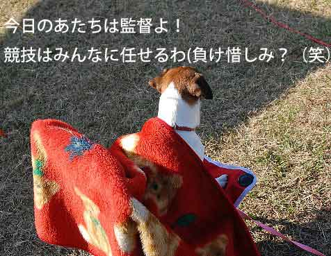 DSC_0249_20081209154629.jpg