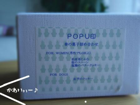 popu2.jpg