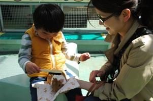 野毛山動物園2