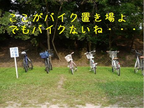バーディin松江城04