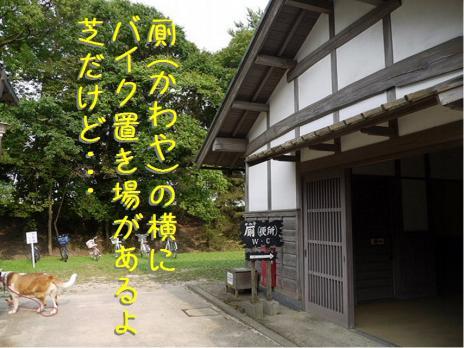 バーディin松江城02