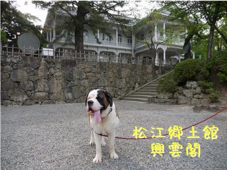 バーディin松江城07
