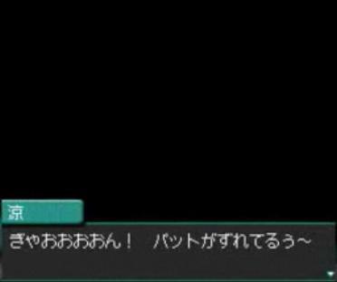 DS4.jpg