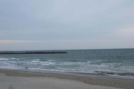 090207新港1