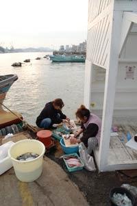 船着場で小魚を下ろす人たち