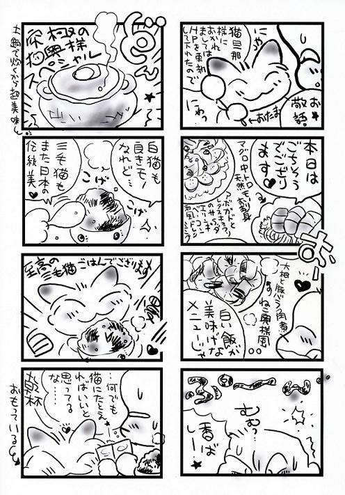 ねこ奥様究極のメニュー004