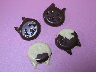 チョコ猫 003