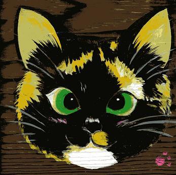 寄り眼の三毛猫メイさんです