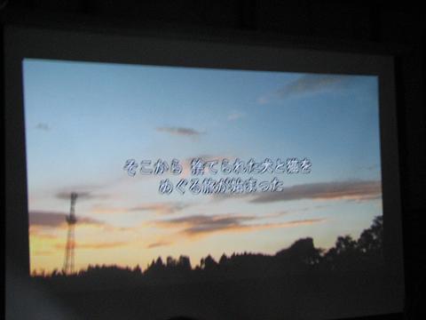 夏猫イベント動物愛護 012