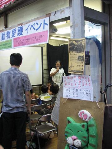 夏猫イベント動物愛護 001
