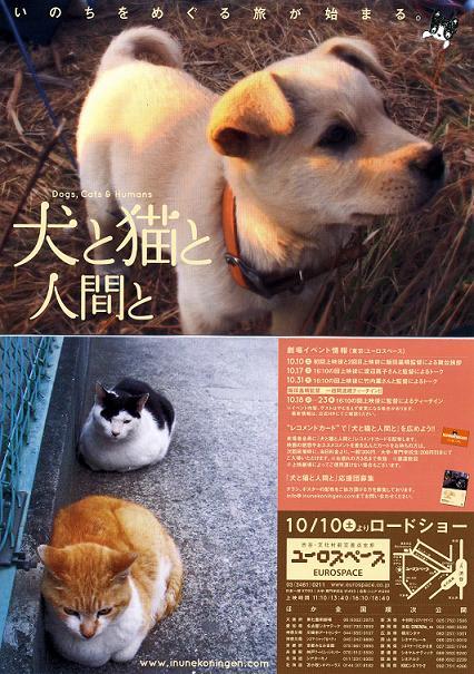 犬と猫と人間と023