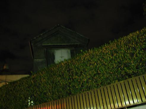 金木犀の夜空 011