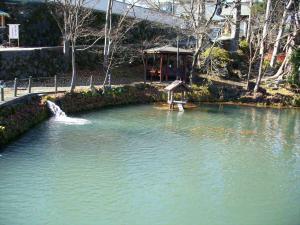 月江寺下の池