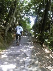 岩国城までの道のり