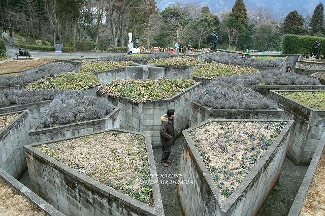 IMG_4651箱根彫刻の森美術館