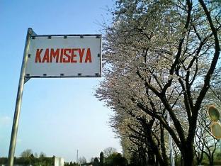 2010日米親善桜祭り上瀬谷通信基地BBQバーガー001
