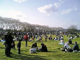 2010日米親善桜祭り上瀬谷通信基地BBQバーガー003