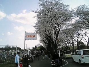 2010日米親善桜祭り上瀬谷通信基地フィリーチーズステーキサンド001
