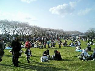 2010日米親善桜祭り上瀬谷通信基地FUNNEL CAKE+チョコ028