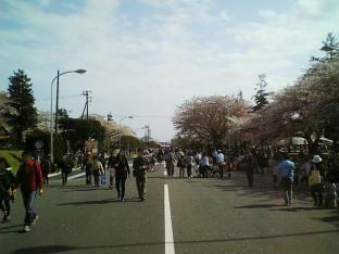 米海軍厚木航空施設)日米親善桜祭り2-4JUMBOセットメニューのホットドック003