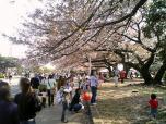 米海軍厚木航空施設)日米親善桜祭り2-4JUMBOセットメニューのホットドック004